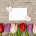 天津最浪漫的求婚策划,天津浪漫求婚策划创意推荐
