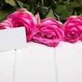 红河214情人节求婚方式有哪些?214最有创意的求婚方式