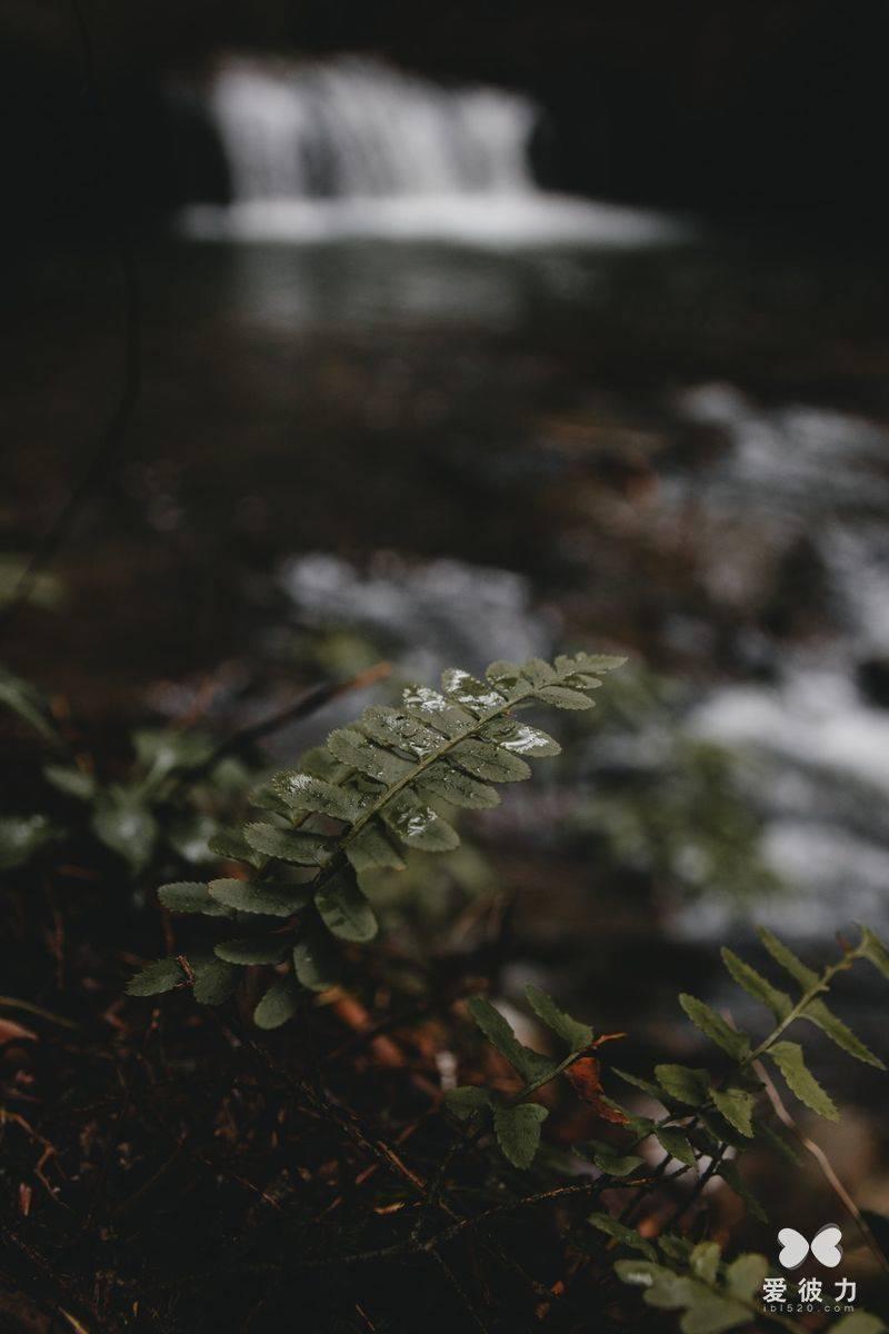 表白情话最暖心一段话 打动人心爱情表白句子