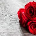 洛阳推荐5个浪漫求婚场所,助你求婚成功