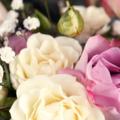 情人节求婚玫瑰花花束图片大全