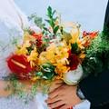 520求婚怎么说,520浪漫求婚词