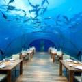 上海适合纪念日约会的餐厅推荐