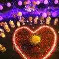 厦门求婚场地布置攻略,没有谁会拒绝如此浪漫的求婚仪式