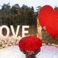 常州最浪漫的求婚方式有哪些?常州浪漫又不张扬的求婚方式