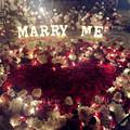 520求婚方式大全