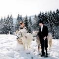 普吉岛冬季浪漫求婚创意 浪漫的求婚套路