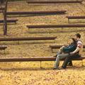 怎样的爱情表白词才是最浪漫的?南充爱情表白词大全