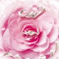 拉萨创意求婚戒指秒杀款 求婚钻戒推荐