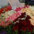 台北中秋节怎么向女朋友求婚?台北中秋节求婚创意